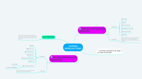Mind Map: SISTEMAS REPRODUCTORES
