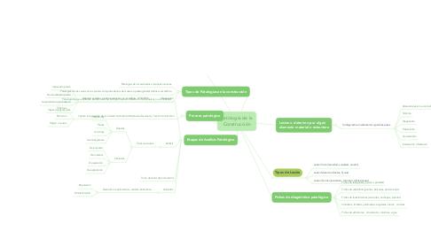 Mind Map: Patología de la Construcción