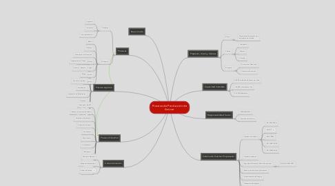 Mind Map: Proceso de Producción de Azúcar