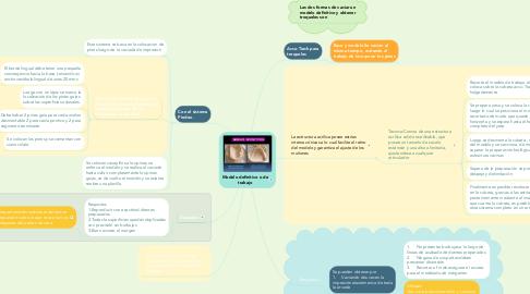 Mind Map: Modelo definitivo o de trabajo