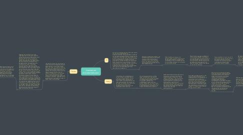 Mind Map: Assessment afstudeerbekwaam