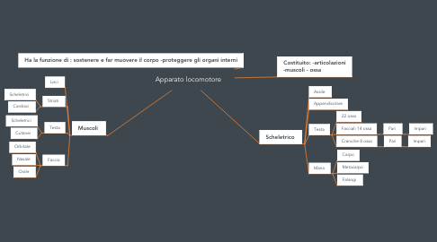 Mind Map: Apparato locomotore