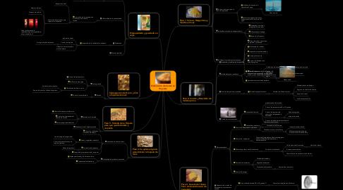 Mind Map: Elaboración de Cereal en Hojuelas