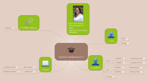 Mind Map: Examen werkproces 3.1