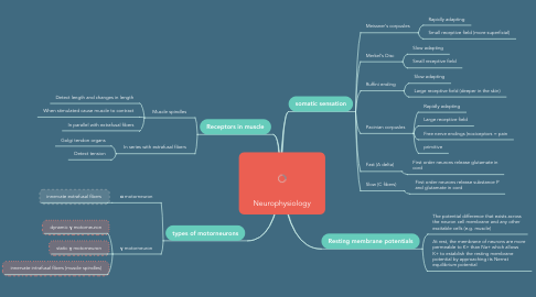 Mind Map: The Neurophysiology of the
