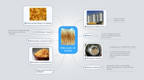 Mind Map: Elaboración de cereales
