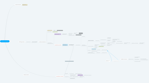 Mind Map: Sviluppo economia USA