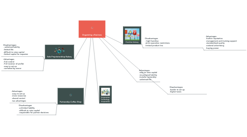 Mind Map: Organizing a Business