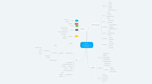 Mind Map: Modèle Bio-Psycho-Social comprend :