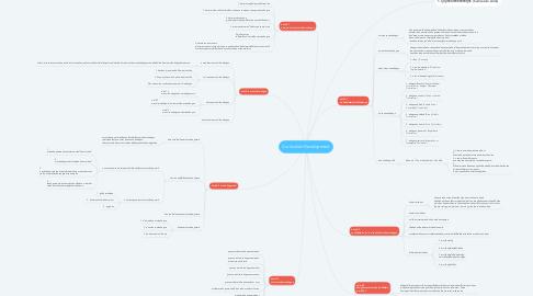 Mind Map: Curriculum Development