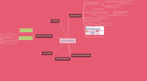 Mind Map: TEJIDO EPITELIAL