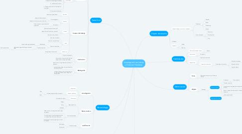 Mind Map: Investigación en Letras y Ciencias Humanas