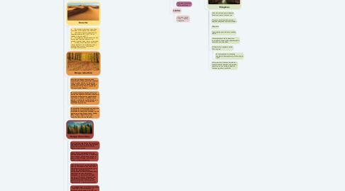 Mind Map: Ecosistemas