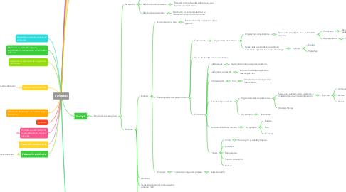 Mind Map: Ecología y medio ambiente