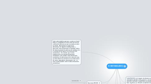 Mind Map: El METABOLISMO