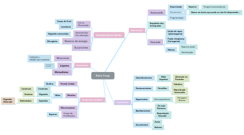 Mind Map: Reino Fungi