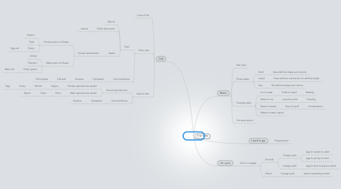 Mind Map: CYCLES