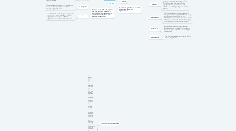 Mind Map: 🥇Concept map for CELL CYCLE  mind map Please register by link 👉 https://bit.ly/3btQtKQ 🔴