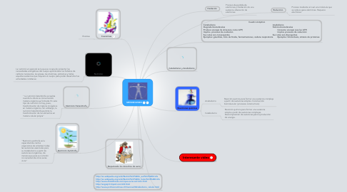 Mind Map: METABOLISMO