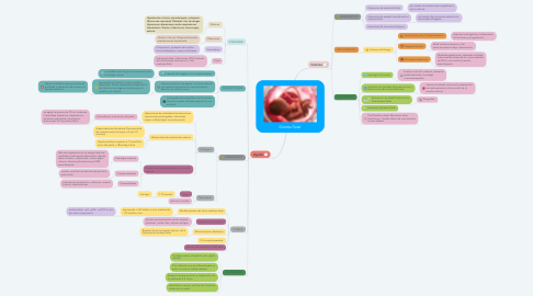Mind Map: Distrés Fetal