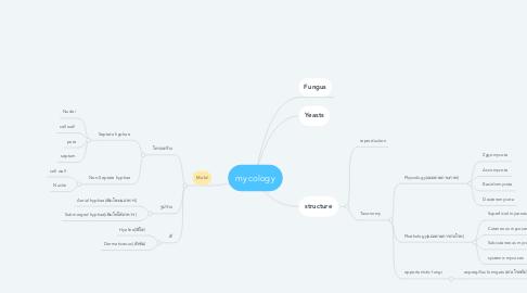 Mind Map: mycology