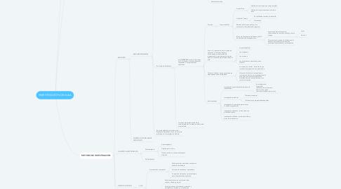 Mind Map: INVESTIGACION DE AULA