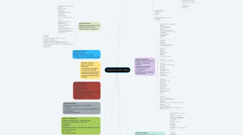 Mind Map: Constitución de Río Negro