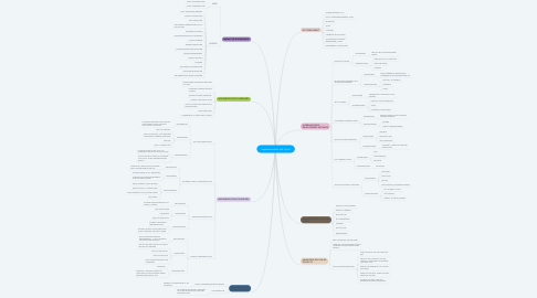 Mind Map: Implementation Life Cycle