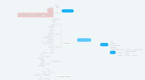 Mind Map: Oral de raport de stage