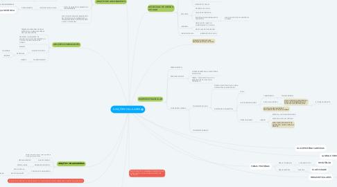 Mind Map: JUNÇÕES CELULARES