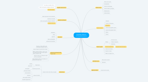 Mind Map: EXAMEN BÁSICO OFTALMOLÓGICO