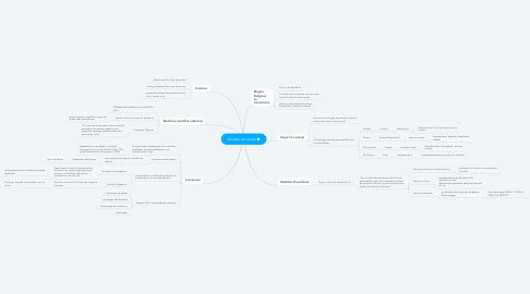 Mind Map: Modelo de saúde