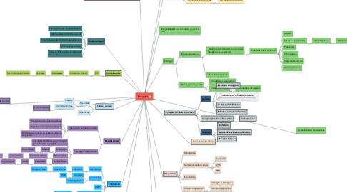 Mind Map: Erisipela