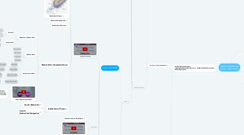 Mind Map: SINIFLANDIRMANIN GENEL ÖZELLİKLERİ