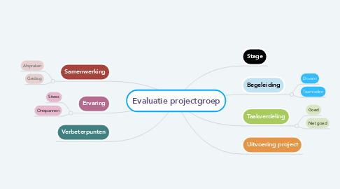 Mind Map: Evaluatie projectgroep