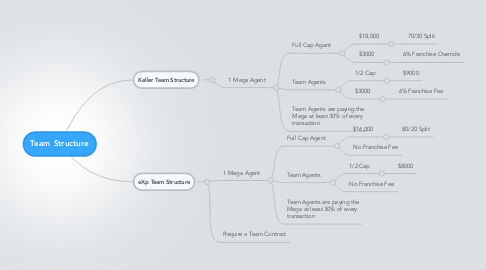 Mind Map: Team Structure