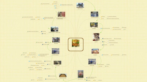 Mind Map: MANUFACTURA DE