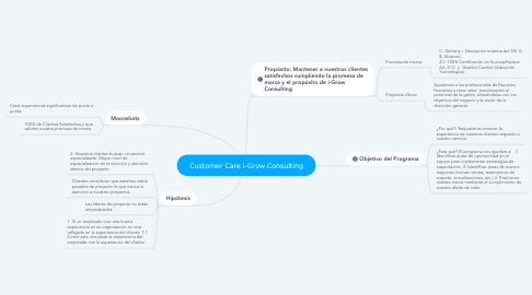 Mind Map: Customer Care i-Grow Consulting