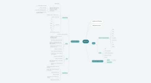 Mind Map: Lektüre