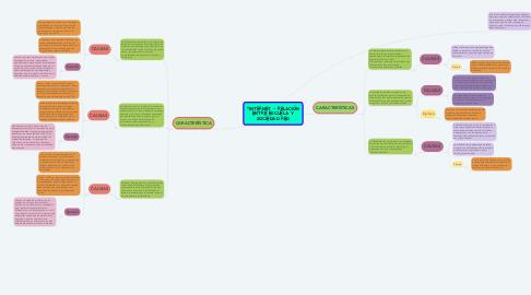 """Mind Map: """"INTERNET – RELACIÓN ENTRE ESCUELA Y SOCIEDAD RED"""