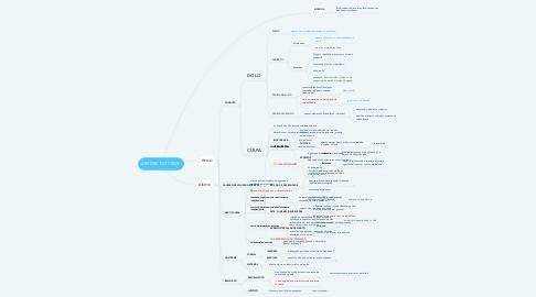 Mind Map: ÁRVORE DO CRIME