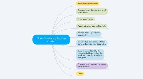 Mind Map: Flow of facilitating: Leading in Crisis