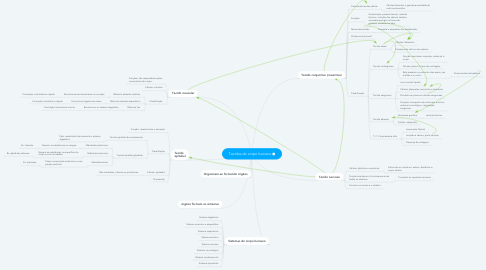 Mind Map: Tecidos do corpo humano