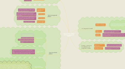 Mind Map: Administración Pública, políticas y programas sociales