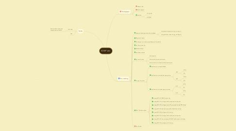 Mind Map: IGMP env