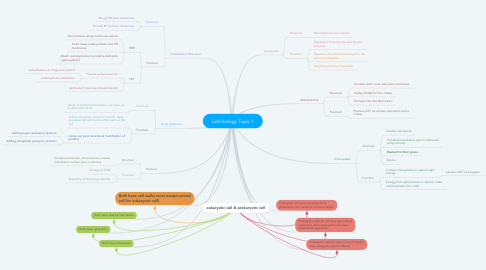Mind Map: Cell Biology Topic 1