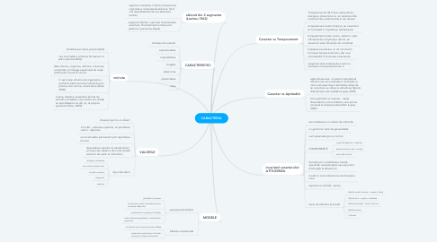 Mind Map: CARACTERUL