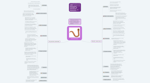 Mind Map: Ancilostomíase