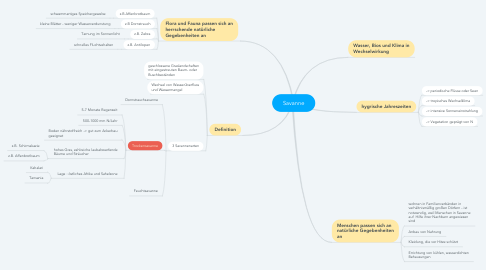 Mind Map: Savanne