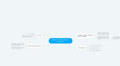 Mind Map: L' APPARATO CIRCOLATORIO         comprende:
